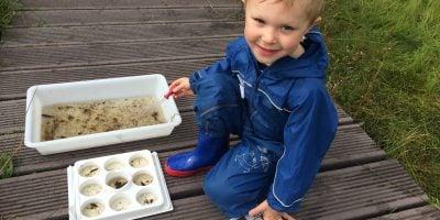 Toddler looking at water invertebrates