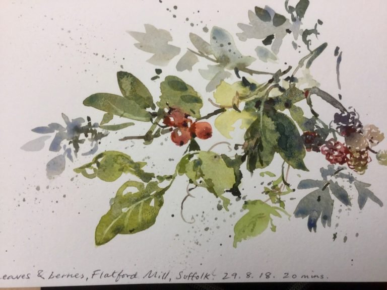 Watercolour leaves and berries