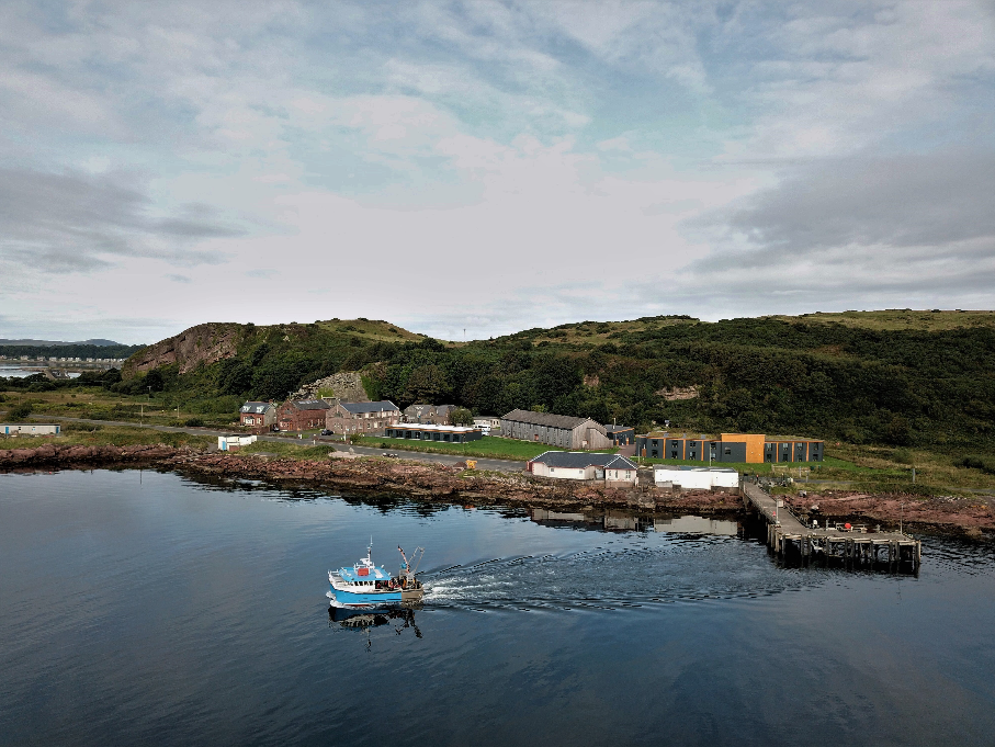 Millport and the Actinia