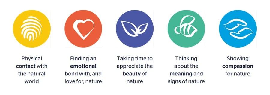 Generation Green wellbeing